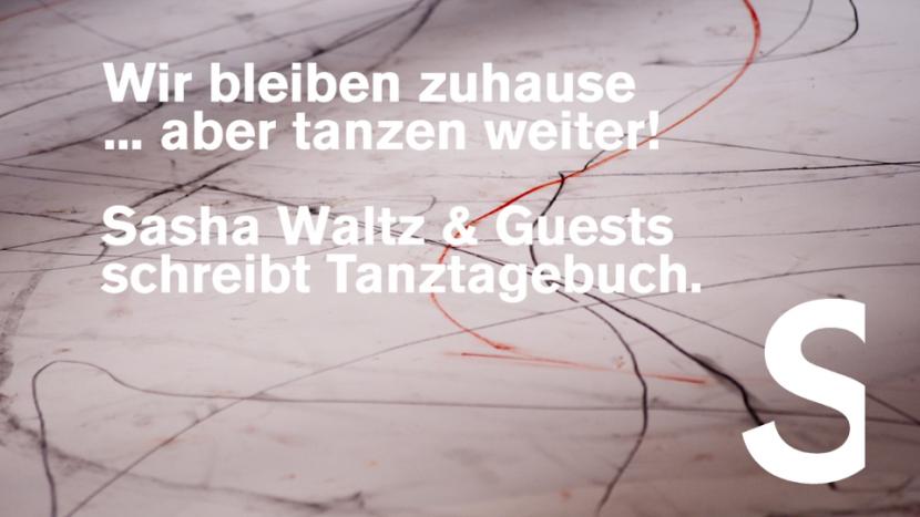 Tanztagebuch_Foto_Continu_(c)Sebastian Bolesch